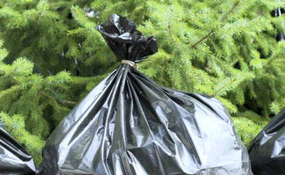 График вывоза мусора на территории СНТ